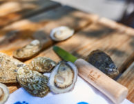 oysters and euphoria logo shucking knife